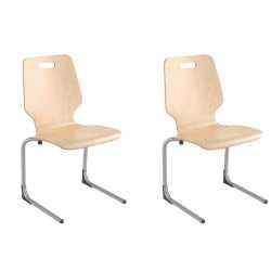 TIC Lot de 2 chaises appui...