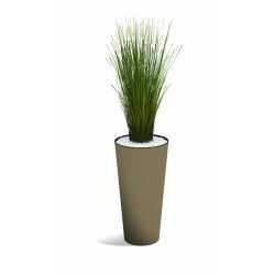VOLCANA Végétaux décoratifs