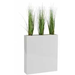 DUNE Végétaux décoratifs